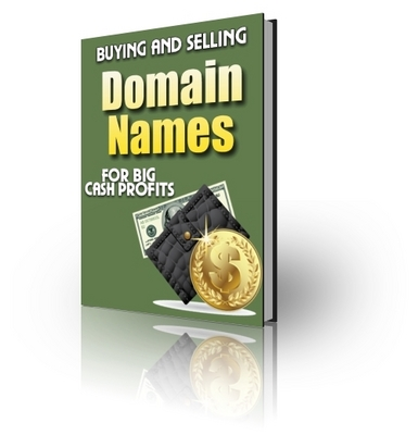 Product picture Buying and Selling Domain Names (PLR)